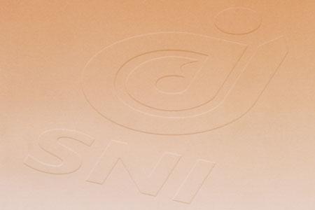 Rapport annuel SNI